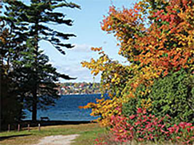 Barrie Fall Colours